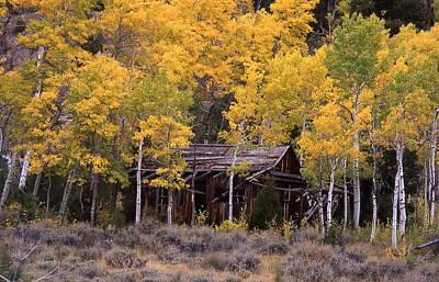 Rocky Mountain Homestead Print by Cynthia  Cox Cottam