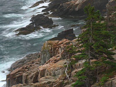 Rocky Shoreline Of Acadia National Park Print by Juergen Roth