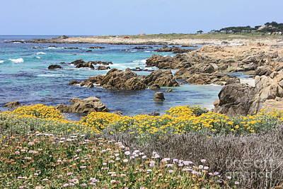 Rocky Surf With Wildflowers Print by Carol Groenen