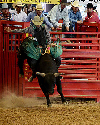 Bull Riders Photograph - Rodeo Bull Rider by Allan Einhorn