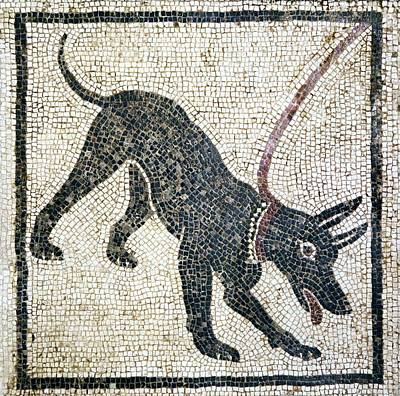 Working Dogs Photograph - Roman Guard Dog Mosaic by Sheila Terry