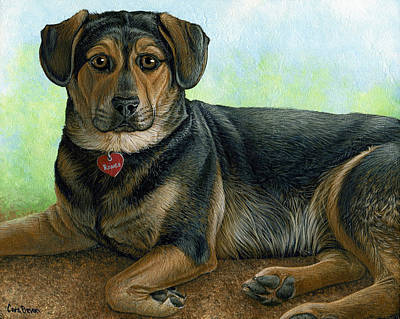 Animal Painting - Romeo by Cara Bevan