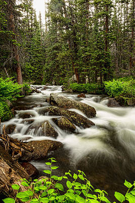 Creek Photograph - Roosevelt National Forest Stream Portrait by James BO  Insogna