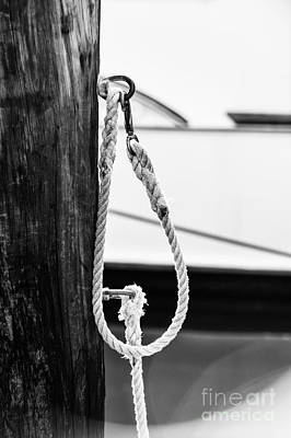 Florida Photograph - Rope Fence Fragment In Harbour by Elena Elisseeva