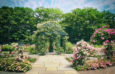 Walkway Digital Art - Rose Garden Walkway by Jessica Jenney