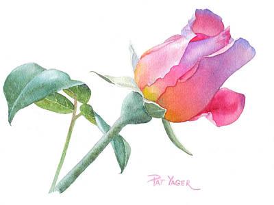 Rosebud Painting - Rosebud Sir Walter Raleigh by Pat Yager