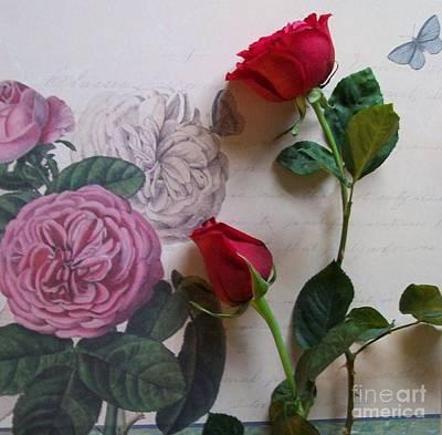 Roses On The Wallpaper Original by Marsha Heiken