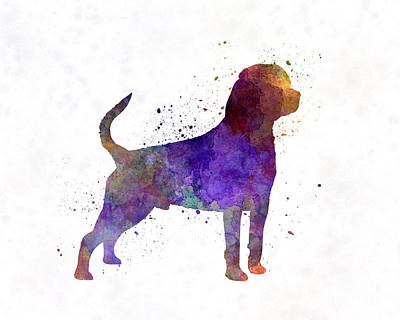 Rottweiler In Watercolor Print by Pablo Romero