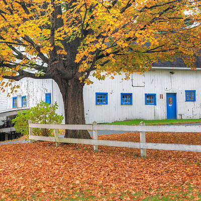 Autumn Photograph - Roxbury Connecticut Barn Square by Bill Wakeley