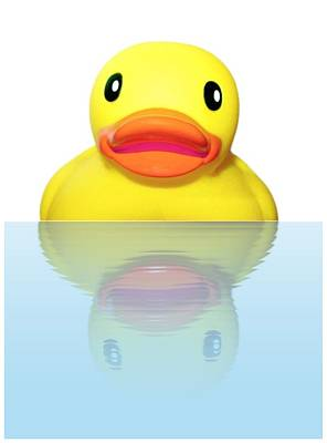 Rubber Ducky Print by Karen Wallace