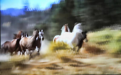 Running Horses Original by Linda Phelps