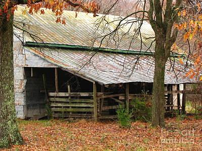 Rural Original by Amanda Barcon