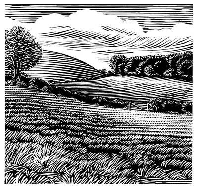 Rural Landscape, Woodcut Print by Gary Hincks