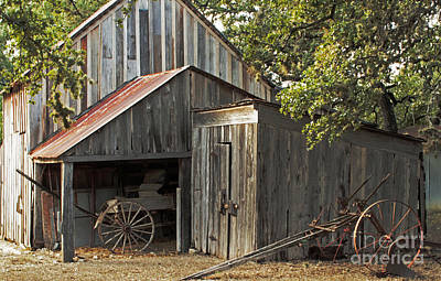 Rural Texas Print by Joe Jake Pratt