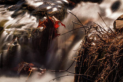 Riffle Photograph - Rushing Water In Forest Park by Garry McMichael