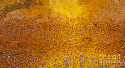 Chemical Photograph - Rust by Tim Gainey