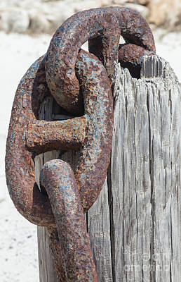 Rusted Ship Anchor Of The Caribbean Print by David Letts