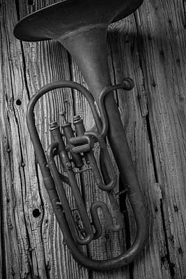 Knotholes Photograph - Rustic Old Horn by Garry Gay