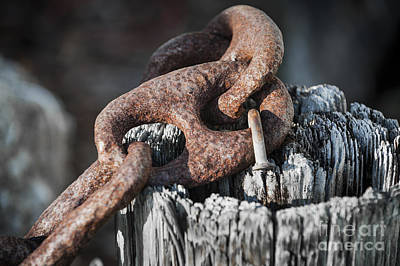 Linked Photograph - Rusty Iron Chain Railing Fragment by Elena Elisseeva