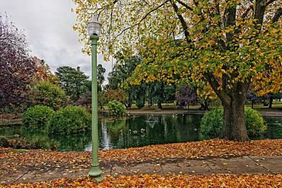 Sacramento Autumn Park Print by Mountain Dreams