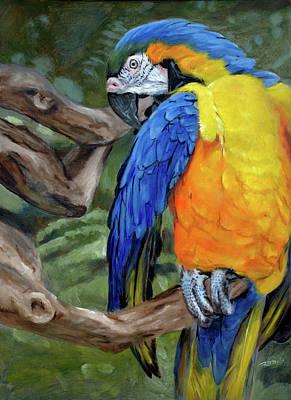 Safari Parrot Original by Christopher Reid