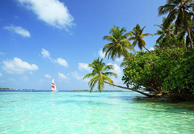 Tropical Climate Photograph - Sail Boat, Indian Ocean by Matteo Colombo