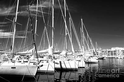 Sailboats Docked Print by John Rizzuto