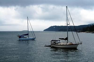 Sailboats In Bar Harbor Print by Linda Sannuti