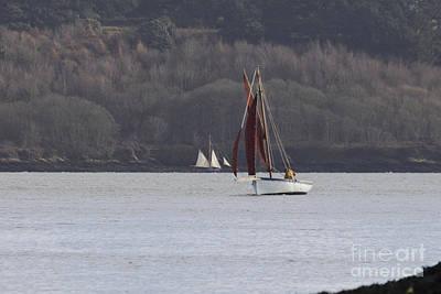 Sailing Carrick Roads Print by Terri Waters