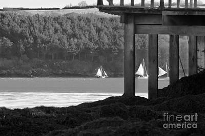 Sailing In Carrick Roads Black And White Print by Terri Waters