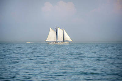 Sailing Off Of Cape May Print by Bill Cannon