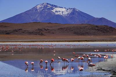 Salar De Uyuni Tour 39 Print by Skip Hunt