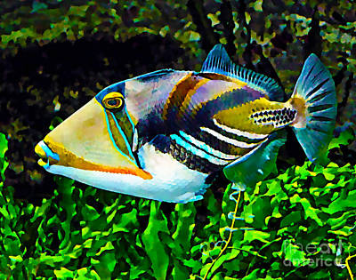 Triggerfish Mixed Media - Saltwater Triggerfish by Marvin Blaine