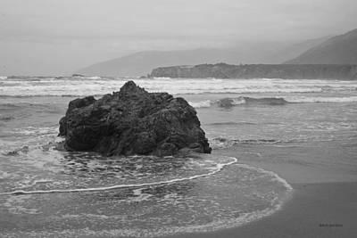 Sand Dollar Beach II Bw Print by David Gordon
