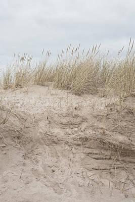 Sand Dune Print by Tom Gowanlock