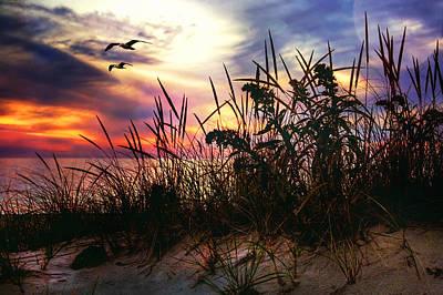Sand Dunes At Sunset - Cape Cod Print by Joann Vitali