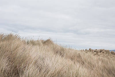 Sand Dunes Print by Tom Gowanlock