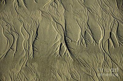 Sand Pattern Print by Marc Bittan