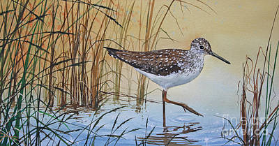 Sandpiper Painting - Sandpiper's Bright Shore by James Williamson
