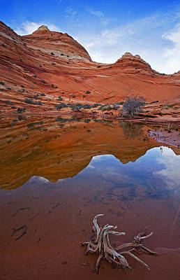 Sandstone Pools Print by Mike  Dawson