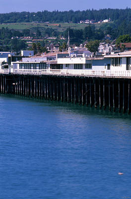 Santa Cruz Pier Photograph - Santa Cruz Pier by Soli Deo Gloria Wilderness And Wildlife Photography