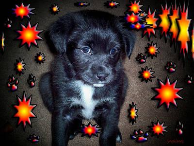 Puppy Mixed Media - Sasha by Robert Orinski