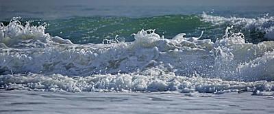North Carolina Coast Photograph - Sass by Betsy Knapp
