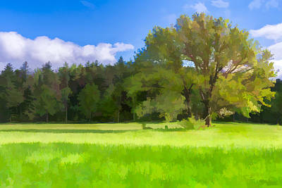 Save My Tree  II Print by Jon Glaser