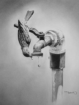 Dirk Drawing - Save Water by Xeno Haider