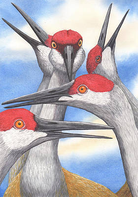 Crane Painting - Say What? by Catherine G McElroy