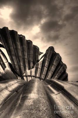 Scallop Sculpture Close Up Print by Nigel Bangert
