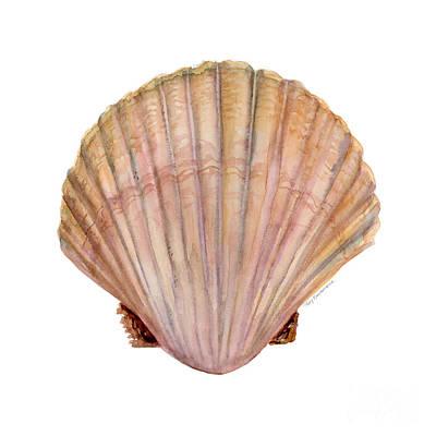 Scallop Shell Original by Amy Kirkpatrick