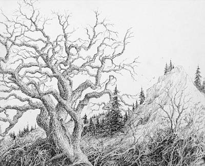 Buzzard Drawing - Scenic Vista by Steve Mountz