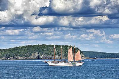 Habor Photograph - Schooner Margaret Todd In Bar Harbor Maine by Brendan Reals